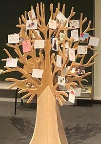 boom overleden kindjes