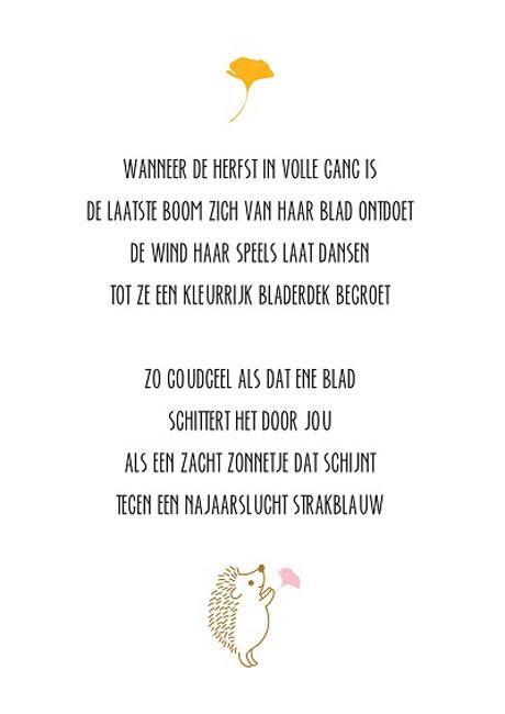 geboortekaartje gedicht
