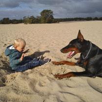 kind en hond spelen op het strand