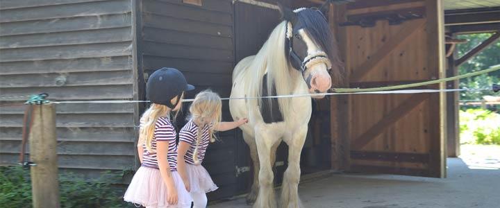Kind met angst voor paarden