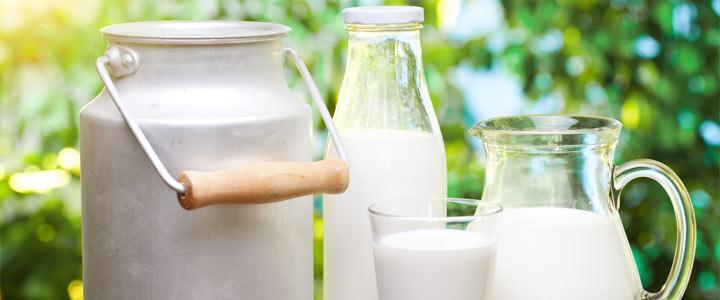Ik de melkmachine met mega productie